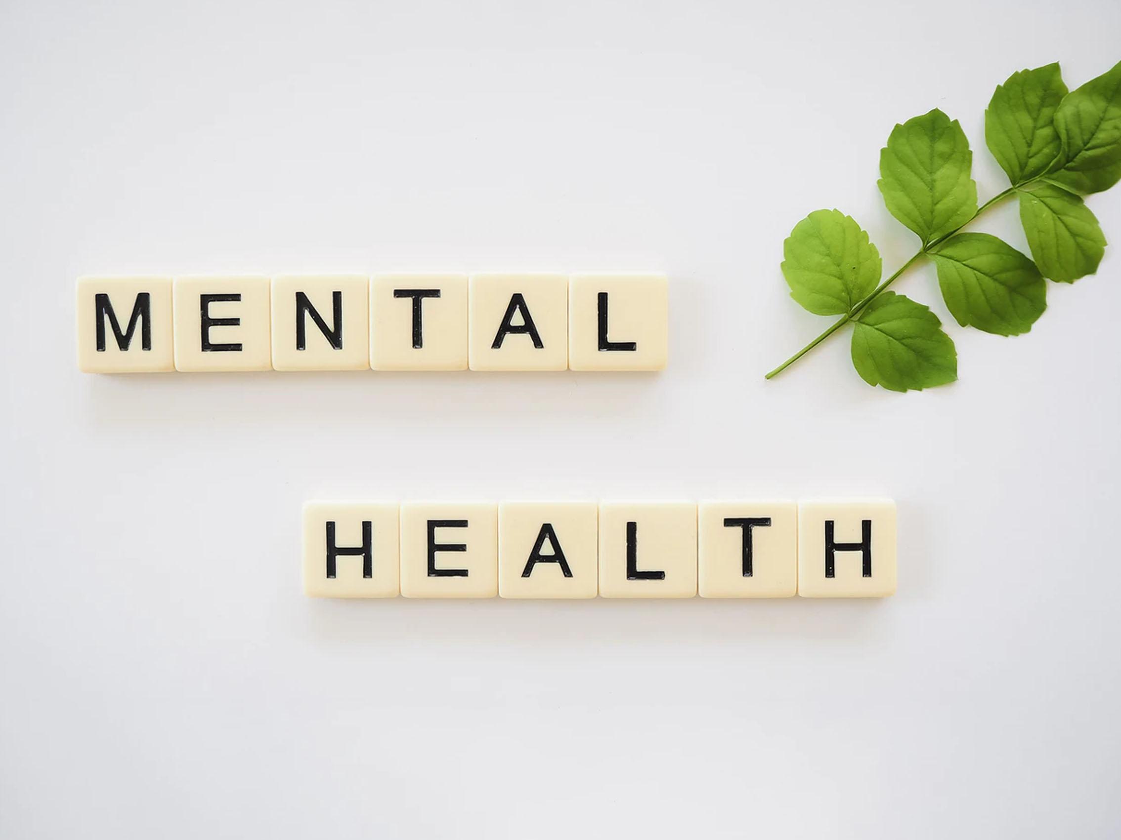 Factores Protectores_0000_Recursos Salud Mental